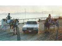 Sealth Horse Carriages